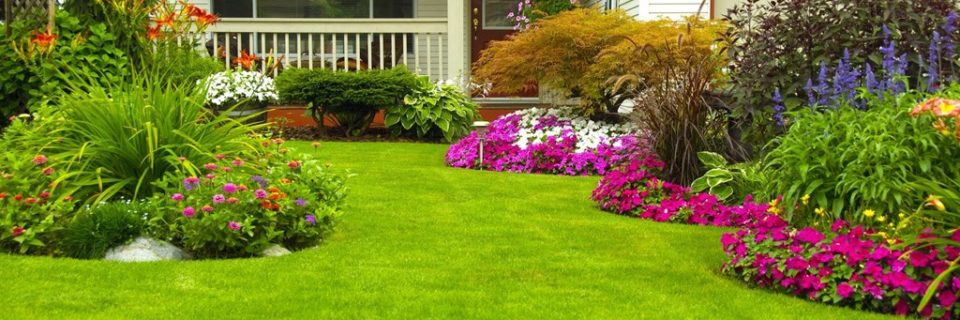 Smith Brothers Lawn Maintenance